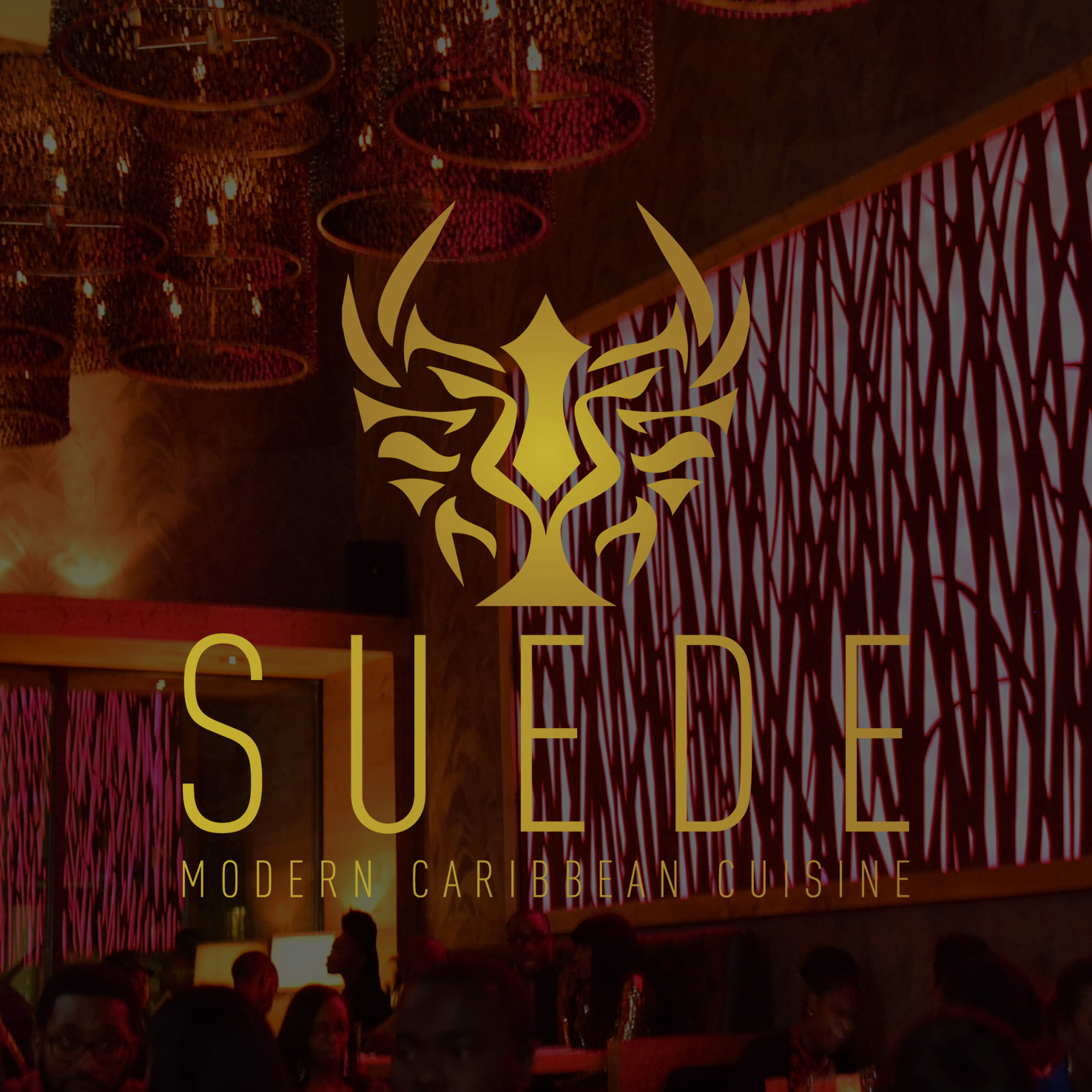 Suede Hospitality Group